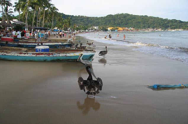 paisaje guayabitos