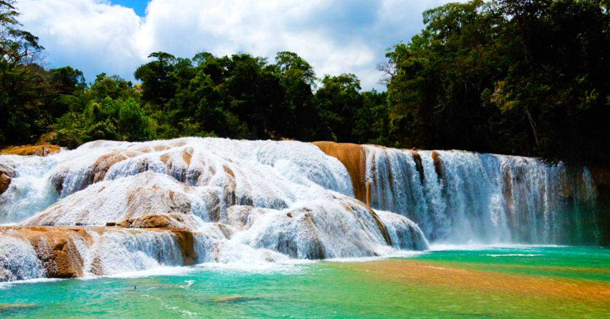 Explora las majestuosas cascadas de agua azul en chiapas for Cascadas de agua