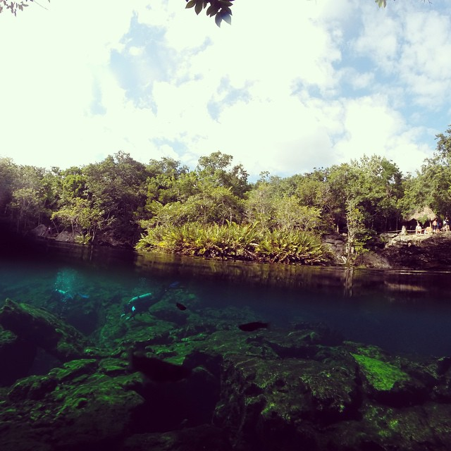 Cenote Ponderosa Riviera Maya