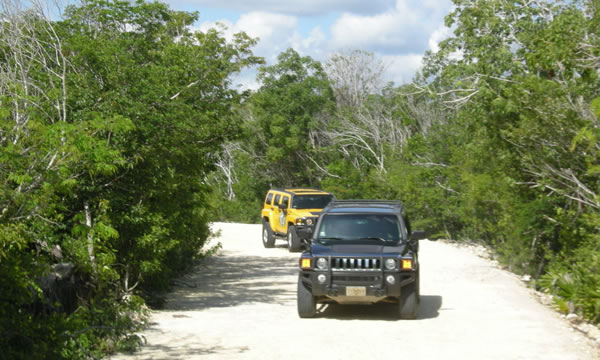 hummer_jungle_tours3