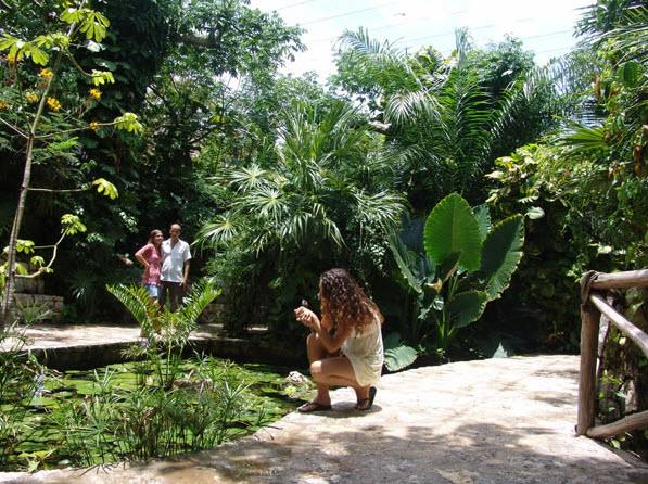 Parque Xcaret - Experiencia Mariposario