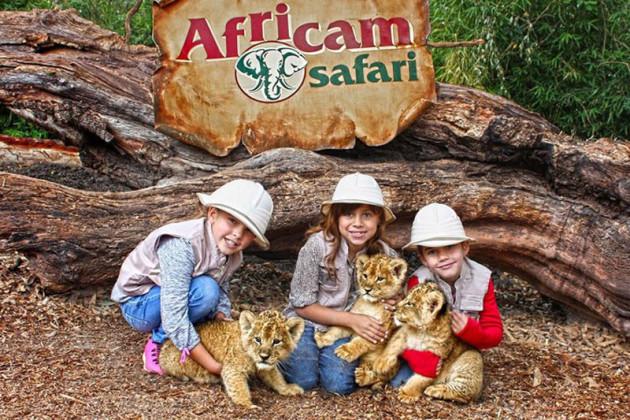 Africam Safarí