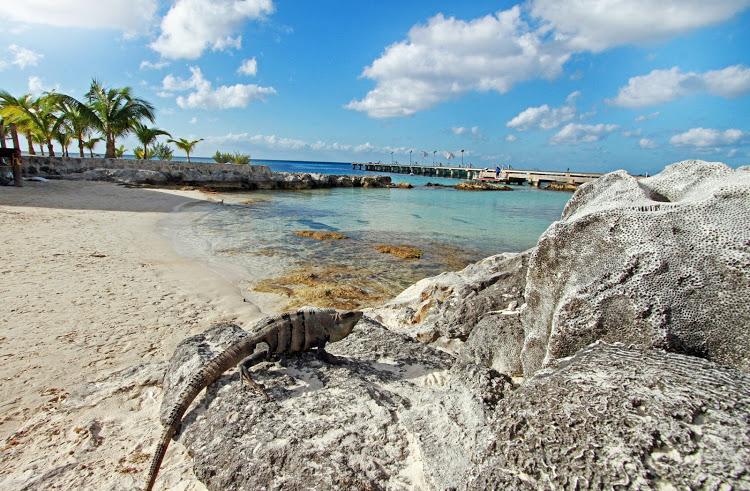 Playa Chankanaab Cozumel