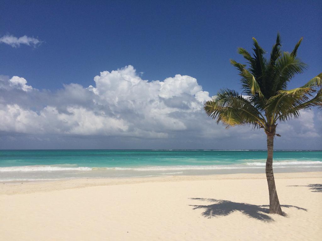 10 playas de ensue o en el caribe mexicano - Fotos de hamacas en la playa ...
