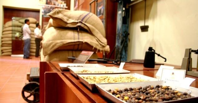 museo del cafe chiapas