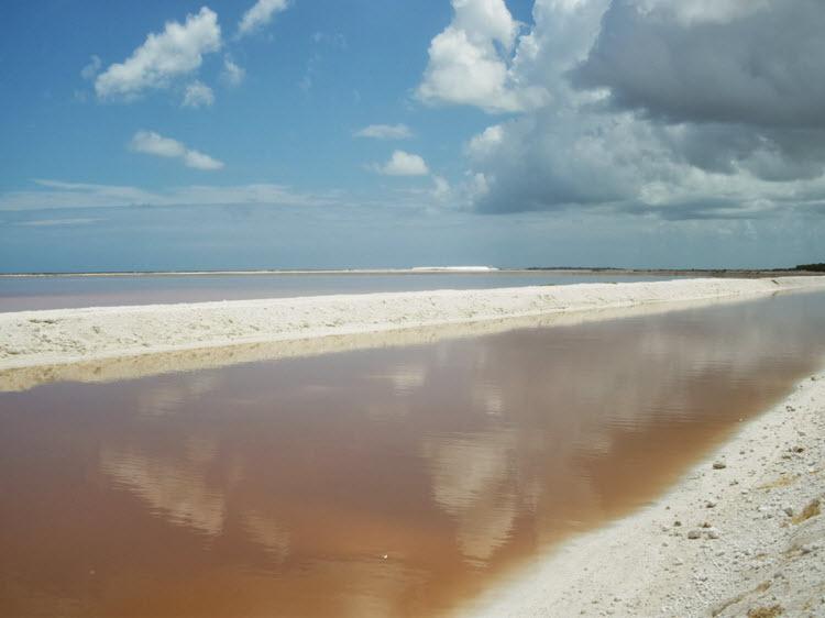 Playas de Sal Rio Lagartos Yucatan