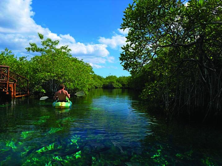 Hotel Bel Air Xpu Ha: Un Refugio para los Amantes de la Naturaleza