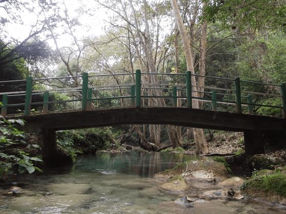 Foto6-PuenteMagico