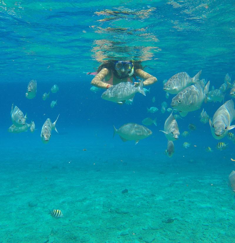Viajar Snorquel Isla Cozumel