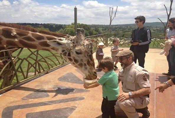Día del Niño, Africam Safari, Puebla