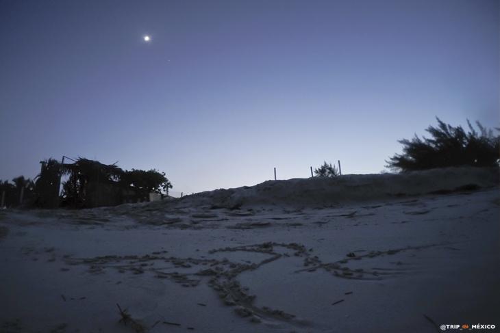 Isla Blanca, un pedacito del cielo en Cancún
