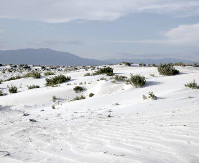 Las Dunas de Yeso en Coahuila, ¡Un sitio de ensueño totalmente blanco!