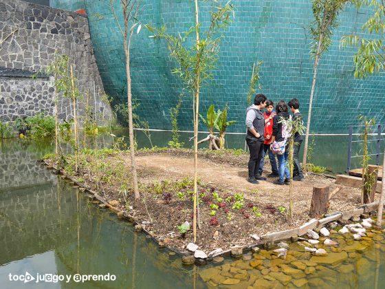 Los 9 Parques en México para Divertirte como Niño