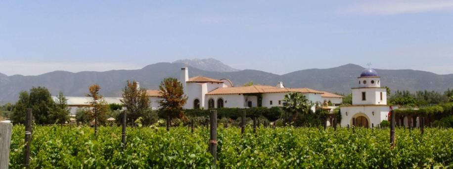 Viñedos Valle de Guadalupe, Baja California Sur