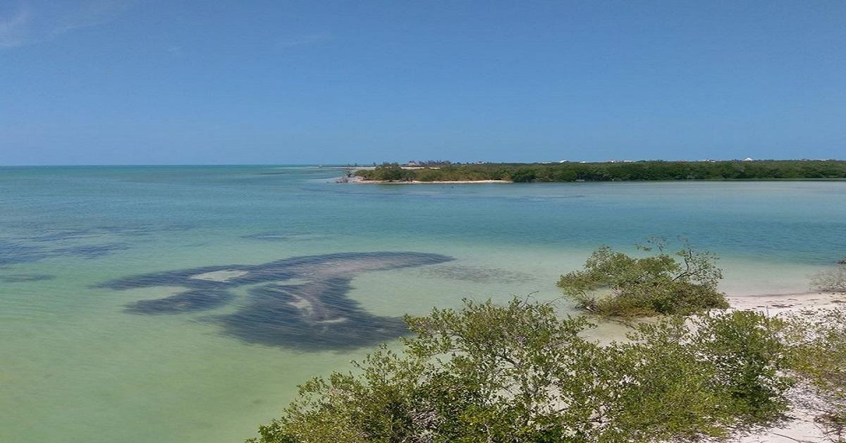 Holbox, una Isla donde se respira el Arte