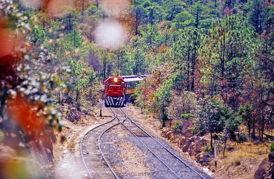Viajar en Tren por México