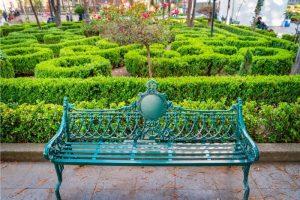 Coyoacán, 5 lugares que debes visitar